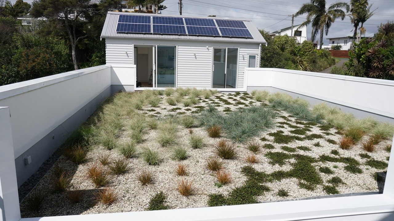 roof top garden covered in nz native plants and room with solar panels